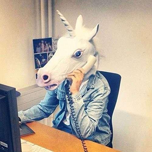 Testa di unicorno, in ufficio serve sempre. Varietà cavallo/zebra/cane/Trump disponibili