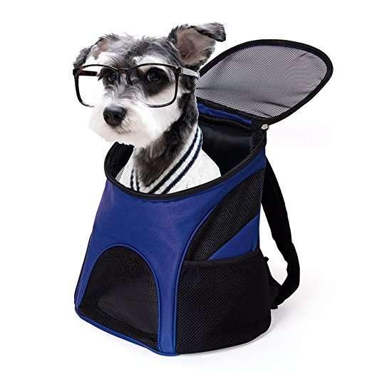 Borsa porta cane! Da viaggio e da escursione, facile da pulire!