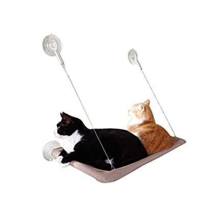Amaca per gatti con vista. Adatta a gatti curiosi e sempre in osservazione!
