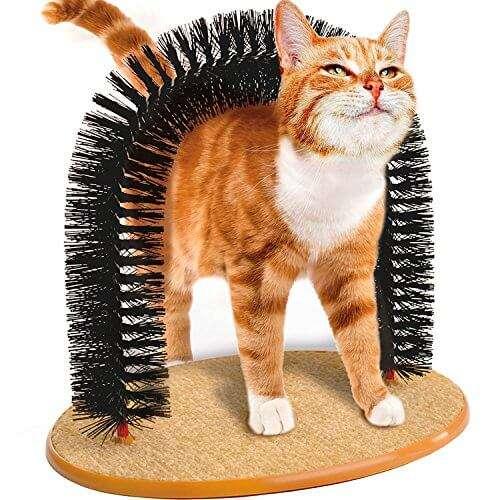 Arco massaggiatore per gatto! Se lo lasci solo in casa dove si gratterà? Sull'archetto, no? circa 12€