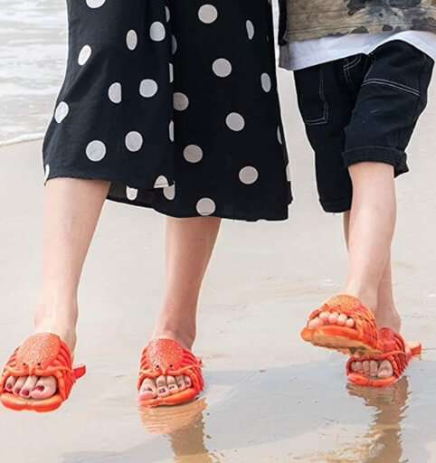 Pantofole di Aragosta da Spiaggia